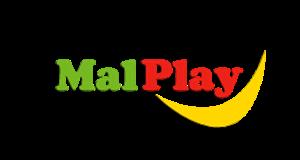 Imagine pentru producator MalPlay