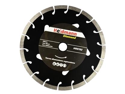 Picture of Disc segmentat 230x22.2x10mm, Heidmann H00102